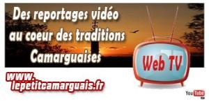Le Petit Camarguais - Web Tv