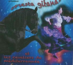 spectacle-equestre-cavaliers-des-dunes-le-grau-du-roi-2567